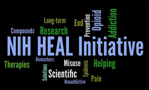 "Word map with ""NIH Heal Initiative"" and therapies, compounds, long-term, research, scientific, opioid, addiction, pain, and other words."